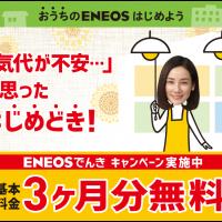 電気キャンペーン